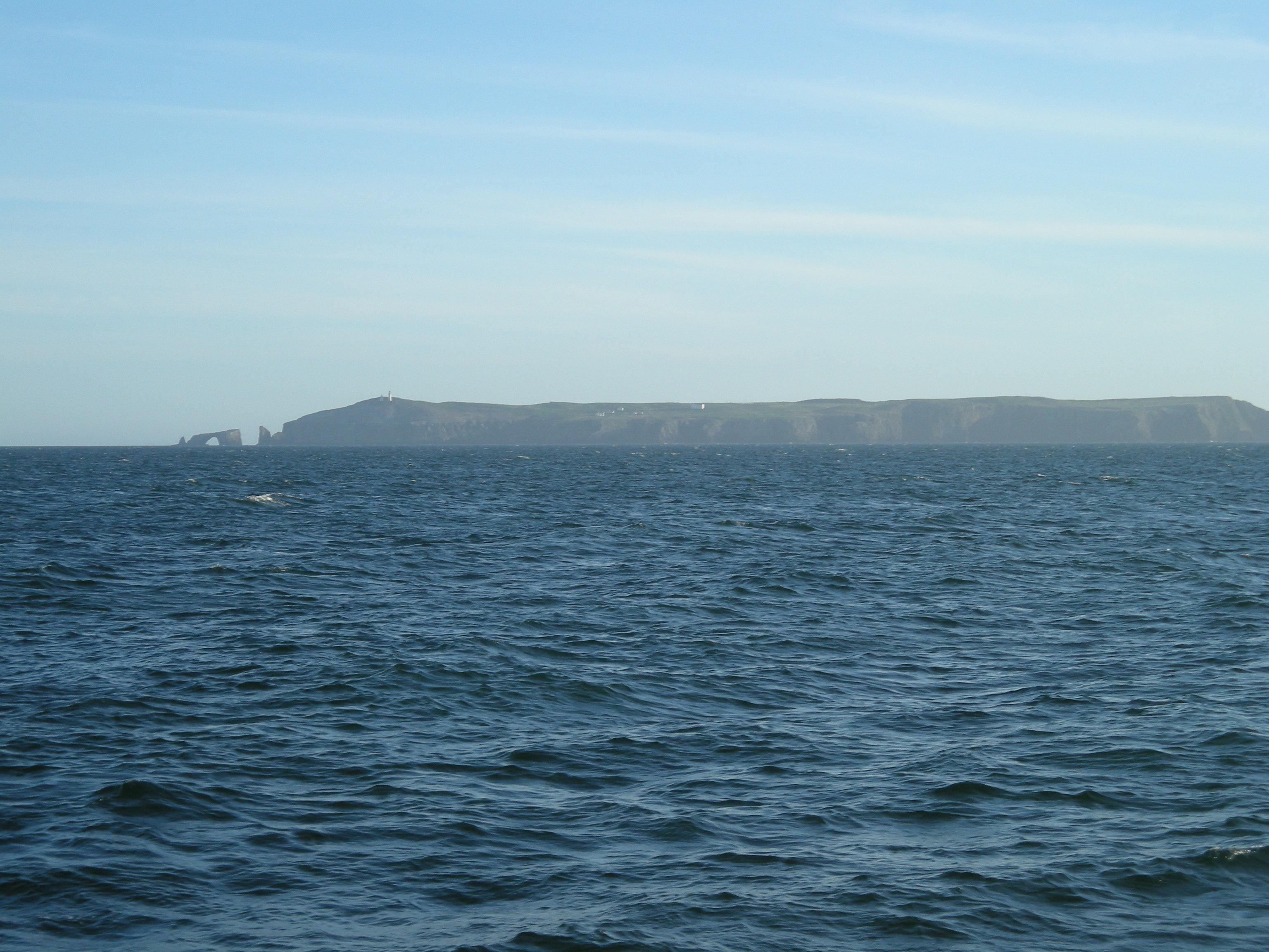 Trip Report: Pacific Islander (Saturday, March 5th ... - photo#42