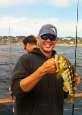 Calico on the MC Swimbait in the Pt. Loma kelp