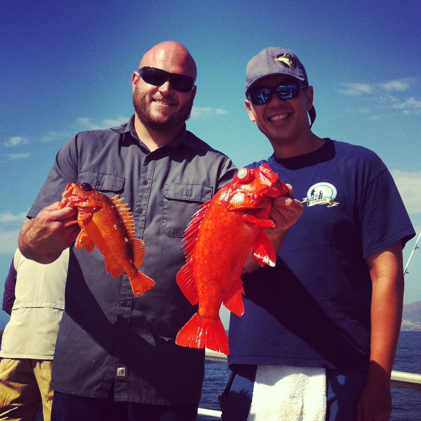 socalsalty | Sportfishing adventures from Southern California, Baja ...