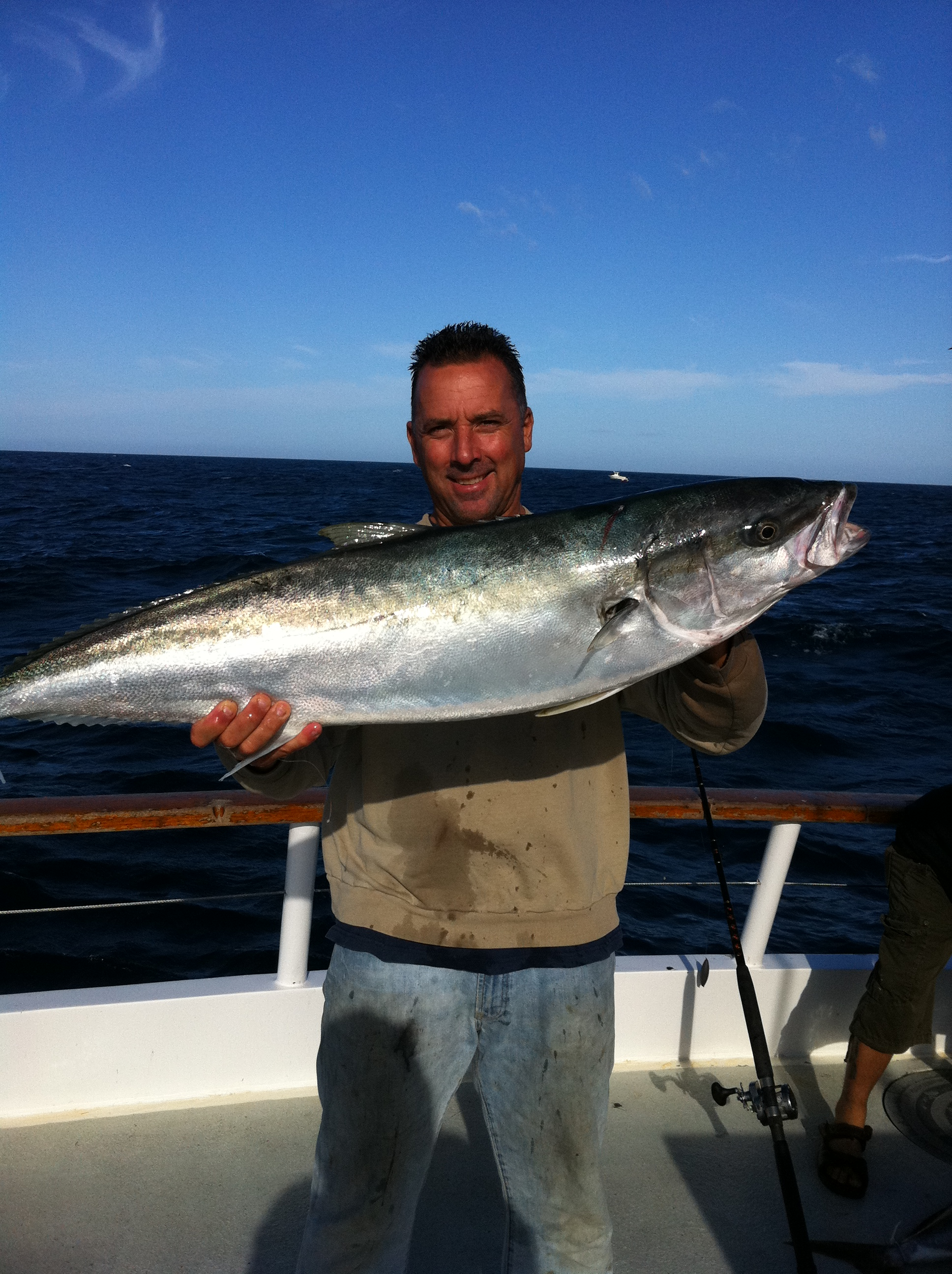 Trip report am new seaforth socalsalty for Seaforth landing fish report