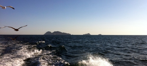The Coronado Islands are open for fishing!