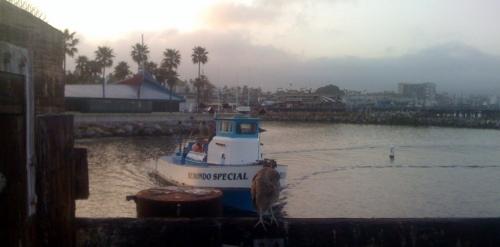 Mystery Boat...The Redondo Special